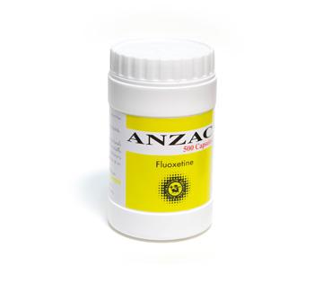 ANZAC (Yellow)